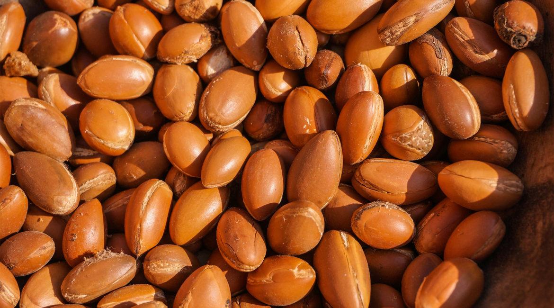 Comment utiliser l'huile d'argan dans les recettes cosmétiques ?